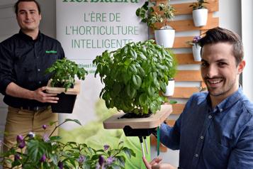 PME Innovation Un coup de main aux pouces pas verts)