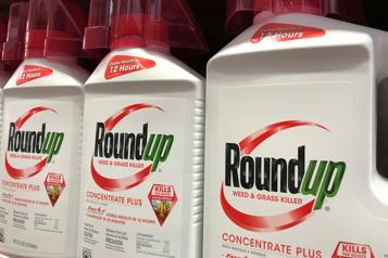 Procès du Roundup Une condamnation de Monsanto confirmée en appel en Californie)
