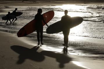Un surfeur tué par un requin en Australie)