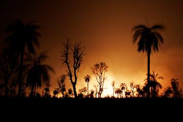 Bolivie: quatre millions d'hectares dévastés par les incendies