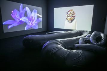 Musée d'art contemporain de Montréal Le langage de l'art, des mondes à découvrir)