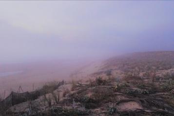 Des microplastiques dans la brume marine)