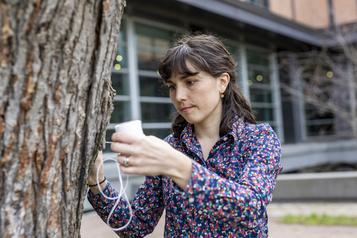 Planète bleue, idées vertes: aux arbres, chercheurs-citoyens!)
