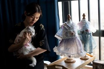 Une styliste chinoise crée des habits pour animaux)
