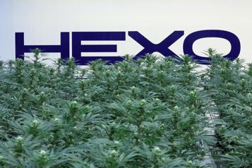 Cannabis Scott Cooper nommé PDG d'Hexo