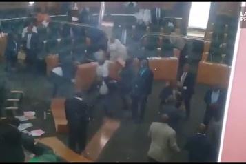 Pugilat au parlement du Lesotho au sujet du mohair
