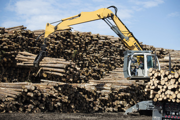 Le Bloc presse Ottawa de soutenir la filière forestière)
