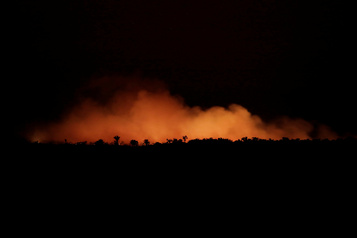 Feux en Amazonie: «C'est une crise internationale»