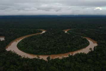 Un défenseur des indigènes assassiné en Amazonie