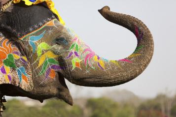 Reportages touristiques d'antan L'Inde fabuleuse)