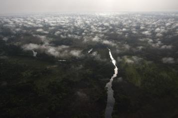 Les forêts tropicales risquent bientôt d'émettre plus de CO2 qu'elles n'en captent