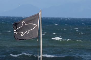 Attaque de requin au large de Bourail en Nouvelle-Calédonie)