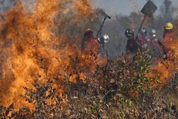 En Amérique du Sud, une sécheresse et des incendies sans précédent)