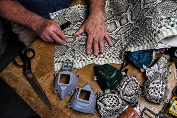 Des masques de protection en peau de python et d'iguane)