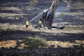 Australie: tous les incendies maîtrisés en Nouvelle-Galles-du-Sud