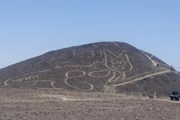 Un géoglyphe de chat découvert dans le désert de Nazca)