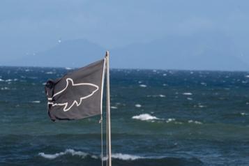 Attaque de requin mortelle au large de la Nouvelle-Calédonie)