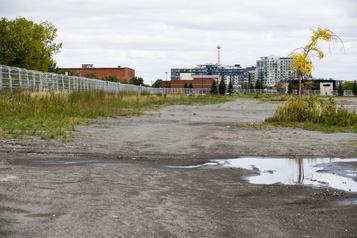 Namur-Hippodrome La carboneutralité pourrait être «très difficile» à atteindre )