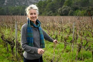 De la montagne à la vigne