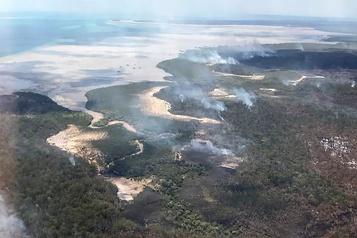 Australie L'île Fraser ravagée par les incendies de forêt)