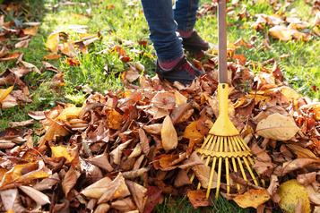 Préparer son jardin pour l'hiver)