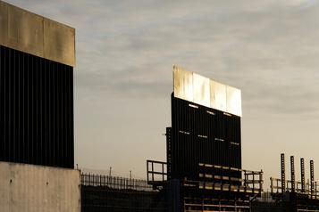 Le mur de Trump menace les jaguars, dénoncent des défenseurs de l'environnement)