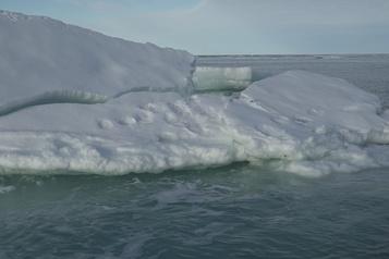 La banquise d'été de l'Arctique au deuxième plus bas niveau jamais observé)