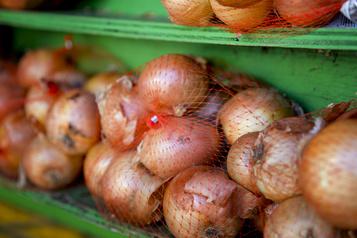 Oignons contaminés: 100autres personnes touchées par la salmonellose)
