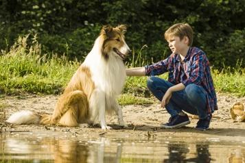 Lassie, la route de l'aventure: chienne de nostalgie ★★½)