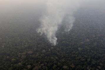 Incendies en Amazonie: Bolsonaro songe à envoyer l'armée