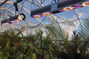 PME Innovation Sollum Du soleil programmable en serre