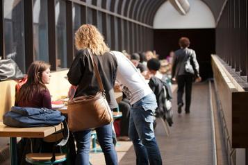 Un programme prometteur pour prévenir les agressions dans les universités