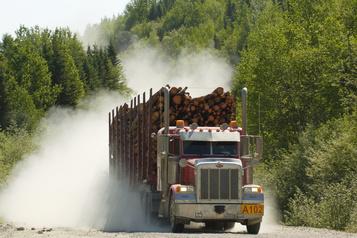Des autochtones manifestent contre les forestières)