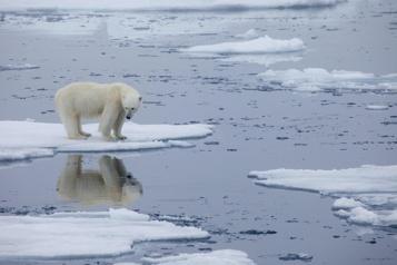 Si le réchauffement est stoppé à 1,5°C, la hausse des océans sera limitée)