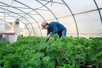 Des légumes d'hiver contre la COVID-19