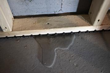 Un sous-sol sans moisissures ni dégât d'eau)