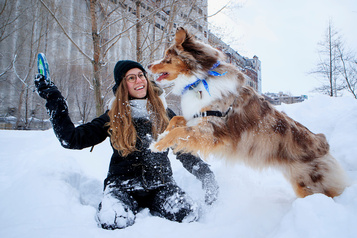Les chiens savent catégoriser les mots, même prononcés par des inconnus