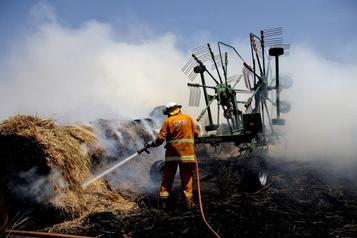 Une soixantaine de vignobles touchés par les flammes en Australie