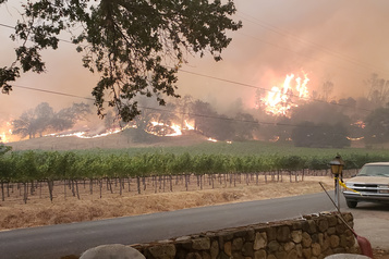 Incendies en Californie Les domaines viticoles de Napa Valley durement touchés)