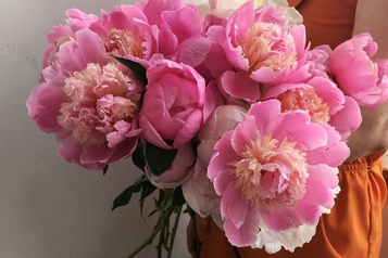 Une maison pour Oursins fleurs)