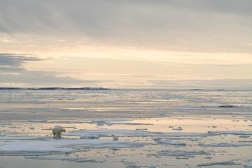 Arctique: record de chaleur dans un archipel norvégien)