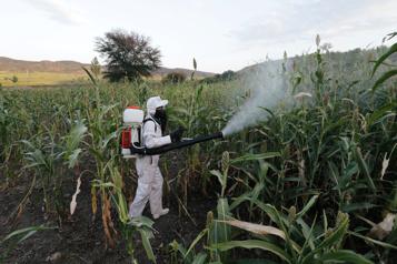 L'exposition aux pesticides augmente le risque de leucémie aiguë myéloïde )