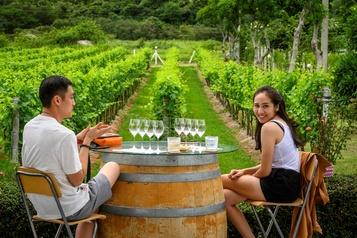 Le vin se fait une place en Thaïlande)