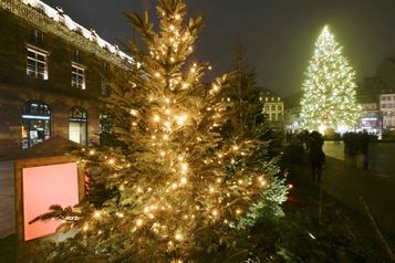 Strasbourg, capitale de Noël, s'illumine… sans chalet ni foule)