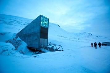 Un million de variétés pour l'«Arche de Noé végétale» en Arctique