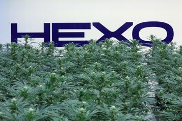 Hexo rachète 48North Cannabis pour 50 millions)