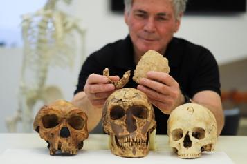 Un oncle du néandertalien découvert en Israël)