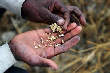 Faim dans le monde Une coalition pour financer la transformation des systèmes alimentaires)