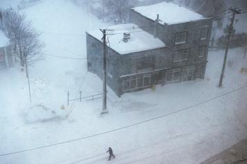 Terre-Neuve: frappée par un blizzard, Saint-Jean déclare l'état d'urgence