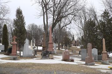 Le cimetière Notre-Dame-des-Neiges suspend enterrements et crémations